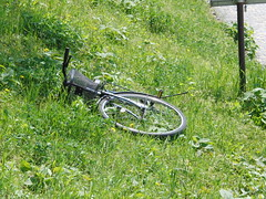 Bike near Kamo River