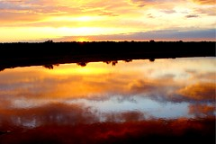 Red River Sunset (spysgrandson) Tags: sunset sky reflection oklahoma water clouds river landscape texas sony redriver cloudscape sonycybershot 050110 spysgrandson
