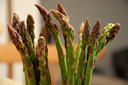 Day 155 - Asparagus by Tim Bungert