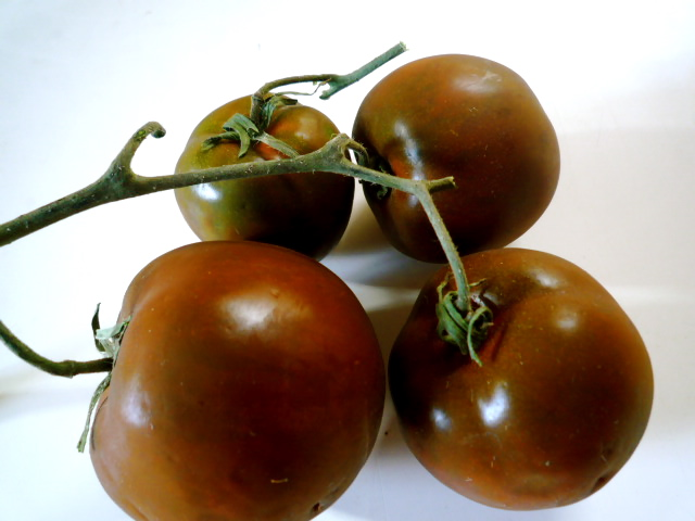 Black Russian tomatoes