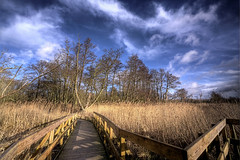 Sculthorpe Moor (nickpix2012) Tags: sculthorpemoor communitynaturereserve fakenham norfolk theperfectphotographer damniwishidtakenthat betterthangood blueribbonwinner golddragon goldenheartaward isawyoufirst diamondclassphotographer flickrdiamond platinumphoto fineartphotos bej