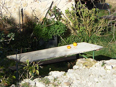 table et oranges.jpg