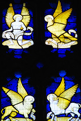 On a Wing and a Prayer at Ely Cathedral! (antonychammond) Tags: new uk england church photo cathedral britain religion ely middleages soe cambridgeshire stainedglasswindow anglican visualart ohhh pictureperfect elycathedral churchofengland blueribbonwinner flickrcolour abigfave theperfectphotographer goldstaraward winnr rubyphotographer placesyouvisit newphotodistillery