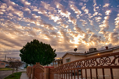 cotton (Kris Kros) Tags: camera morning blue red summer sky orange cloud clouds photoshop sunrise raw nef north like cotton adobe hollywood looks format 50 hdr kkg cs4 photomatix my 1xp at neighboorhod kkgallery