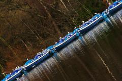 32 29 5 12 (foto.phrend) Tags: blue reflection london water boats sailing diagonal serpentine