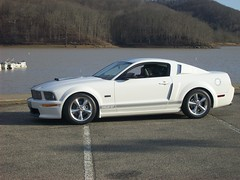 BF13 (MUSTANG GT 2006) Tags: show cars ford car freedom greg shelby shows mustang gt carshow mustangs roush jackroush mustangjackroush gregfreedomjackroushgregfreedom freedommustangjackroushgregfreedom roushcar freedommustangs