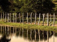 Grafismo Cercado (Diogo Santos - FOTOREVEL STUDIO) Tags: sunset pordosol lake water rio gua brasil landscape lago place paisagem bahia cerca cor madeira lugar arame farpado canonpowershots5is canons5 serrolndia