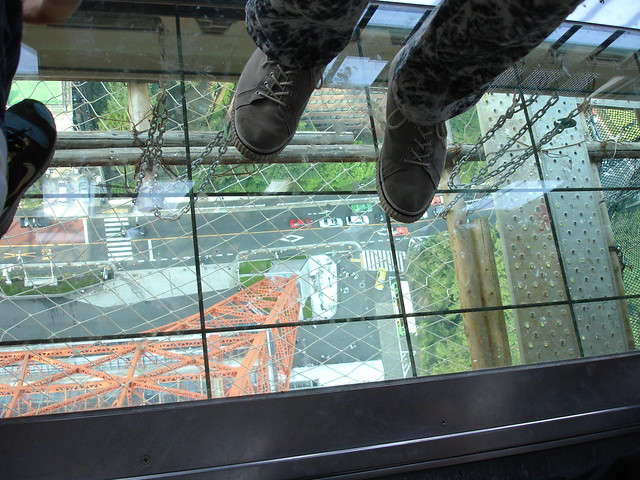Glass floor! With safety net under it. Either i...