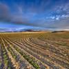 Behind the Hills (Jës) Tags: sky jump nw farm joe off wa washingtonstate hdr kennewick tricities nikond90 vetorama