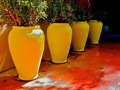 Yellow Planters (L F Ramos-Reyes) Tags: travel colors yellow planters decoration morocco maroc marrakech platinumphoto colorphotoaward aplusphoto newacademy overtheexcellence atomicaward theauthorsplaza