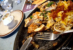"Eating from a hot ""plate"" (talitasouza) Tags: food chicken restaurant plate diner fork delicious sanyo quesadillas vpce870g"