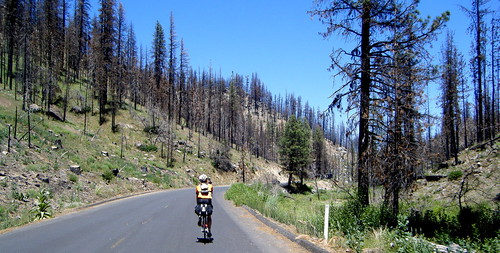 Riding Through the Burn