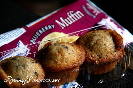 Project 365: Blueberry Muffin