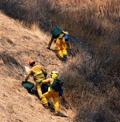 Firefighters Battle Foothill Wildfire. © Photo by Mike Meadows. Click to view more...