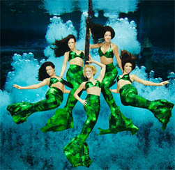 Department of Homeland Security funds for the Weeki Wachee Mermaids?