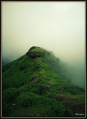 Defeated by the mist!! [Explored #68] (D a r s h i) Tags: mist mountain green rain fog clouds fort hill monsoon torna darshi darshita