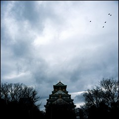 (Tommy Tomickey) Tags: blue 6x6 film japan rolleiflex 50mm hasselblad osaka osakacastle  fujichromeprovia100f  501c nikon9000ed  expired2007