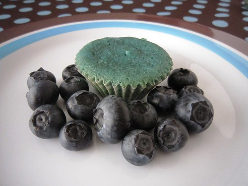 Blueberry cupcakes with blueberries