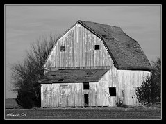 White-washed (MEaves) Tags: blackandwhite bw barn rural illinois pentax structure decayed blackdiamond whitewash blueribbonwinner roofdamage blackwhitephotos mywinners k10d pentaxk10d platinumphoto anawesomeshot picswithframes bwartaward goldstaraward