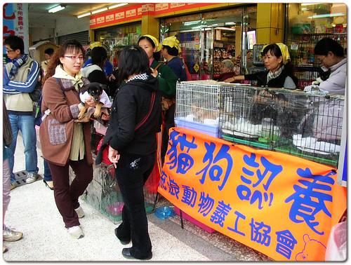 2009-01-17「資訊」台南市明天1月18日領完消費卷,記得來大遠百參加認養會~領養一隻回去過年旺汪旺~