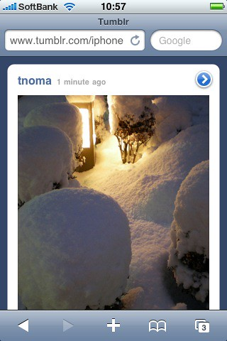 Tumblr on iPhone