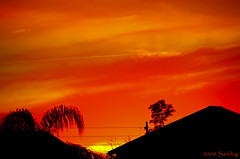 Burning Down the House! (Saildog Photography) Tags: sunset red sky orange usa black beautiful silhouette yellow clouds us nikon florida unitedstatesofamerica explore jacksonville fl jax vaportrails northflorida atlanticcoast nikon18200mm northeastflorida nikond300 saildog