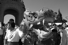 Creatures (C. Orrico) Tags: china new mexico year chinese dragons parade desfile tigers reforma año nuevo chino tigres dragones