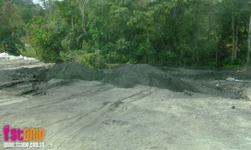 Mandai as dumping ground: Will this pollute our water?