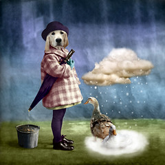a very long winter (Martine Roch) Tags: winter portrait cloud dog holiday snow rain umbrella vintage children square duck kid bucket labrador child antique surreal photomontage manray handcoloured digitalcollage petitechose martineroch