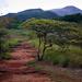 Rincon de la Vieja National Park - Costa Rica Study Abroad