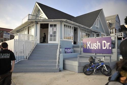Kush Venice Beach