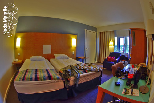 6/44 Sas Hotel In Oslo