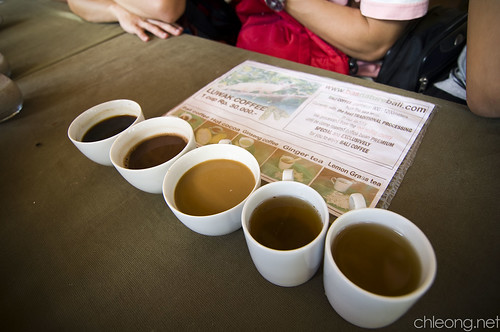 Kopi Luwak Tasting Session
