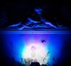 blue Angels (the_lighter) Tags: blue light sculpture angel nikon long exposure creation angels luce textured angeli sfera