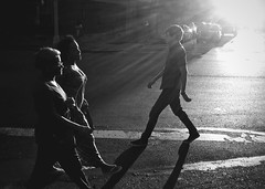 """Shadow Walkers"" (Sion Fullana) Tags: urban blackandwhite newyork blancoynegro citylife streetphotography silhouettes beautifullight crosswalk allrightsreserved newyorkers 13thstreet iphone peoplewalking urbanshots blackandwhitecity urbannewyork iphoneshots shadowwalkers iphoneography iphoneographer sionfullana throughthelensofaniphone"