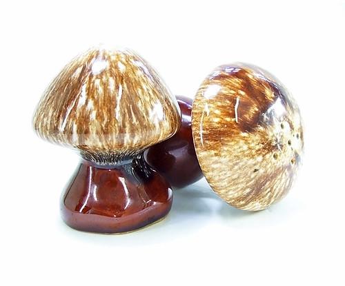 Vintage Mushroom Salt And Pepper Shakers Mushroom Salt Pepper