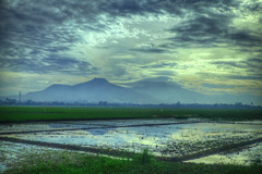 Indonesia - Java - Landscapes and Vistas - On the Train (KA Argo Wilis, Eksekutif) - Stewart Leiwakabessy