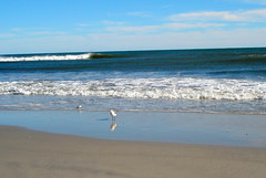 """Somewhere beyond the azure blue..."" (Clara Hinton) Tags: ocean blue beach peace bluesky serenity atlanticocean blueocean naturesfinest beachsand beautysecret bluewaves brigantinenj bej impressedbeauty beachwaves newjerseybeach newacademy concordians clarahinton ourmasterpieces brigantinecity oceaninthefall oneofmyfavoritebeaches"