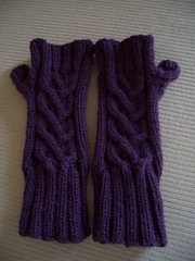 Evangeline Fingerless Gloves