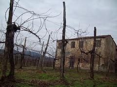 casa vecia (Battaglia Terme, Veneto, Italy) Photo