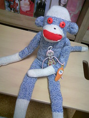 My first monkey