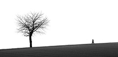 Attention Tree! (Philipp Klinger Photography) Tags: sky bw white black tree monochrome field silhouette germany walking deutschland person blackwhite nikon hessen walk hill bad downhill minimal line sw monochrom minimalism attention uphill philipp weiss minimalistic schwarz hesse nauheim klinger wetterau weis aplusphoto d700 dcdead wisselsheim therearetwopeople