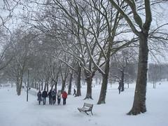 snow day (Jan 2009) - 17