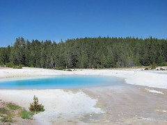 Porcelain Basin - Norris Geyser Basin - Yellowstone (AR Nature Gal) Tags: water pool colorful yellowstone geyser bacteria thermal norrisgeyserbasin porcelainbasin