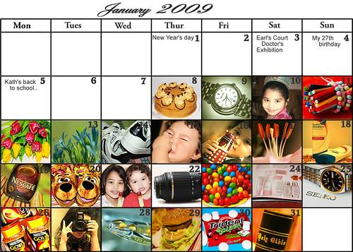 January 2009 diary