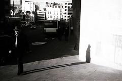 . (abe.kamal) Tags: brussels blackandwhite bw film december delta olympus xa2 epson 100 2008 ilford 3170