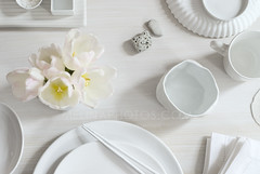 blissful table (mwhammer) Tags: food white detail modern table fun contemporary shapes monotone monochromatic elegant simple overhead tabletop stilllifes lyrical colorseries melinahammer