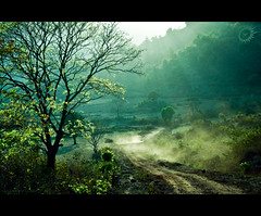 Araku Valley (Yug_and_her) Tags: life road trees light sun india green metal landscape nikon valley rays dust incredible araku d90 krishlikesit