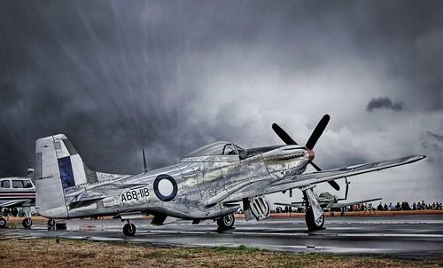 Mustang - by Michael Scott