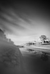 maryjane on my mind.. (jair pardales) Tags: china blackandwhite blur tree fog river landscape beijing dike wangjing nikond200 bwdreams jairpardales
